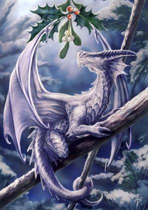 Dragon 7 copy